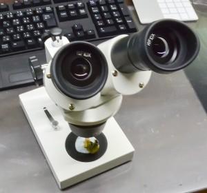 実体顕微鏡